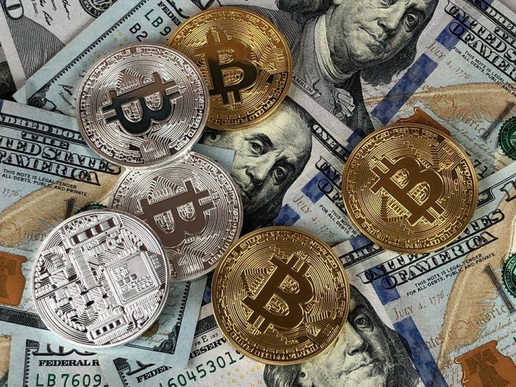 surveys for bitcoin